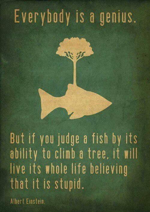 Everybody is a genius. -Albert Einstein-